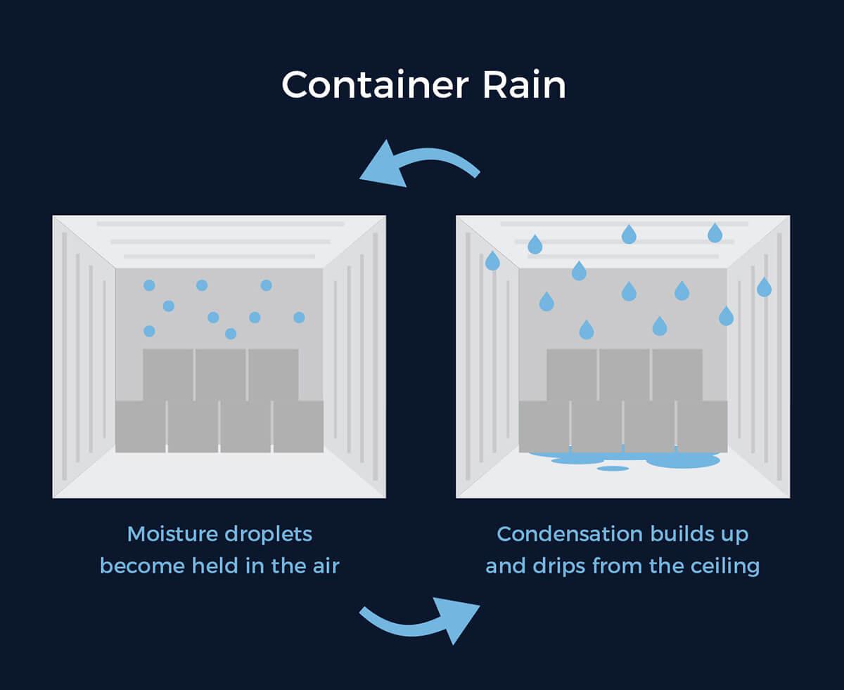 What Causes Container Rain? - EPGNA